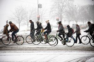 VeloGaraj biciclete