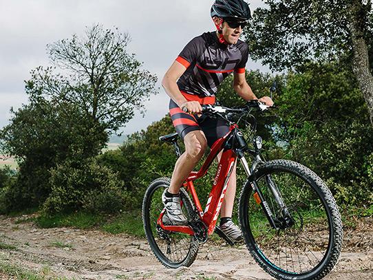 biciclete_electrice