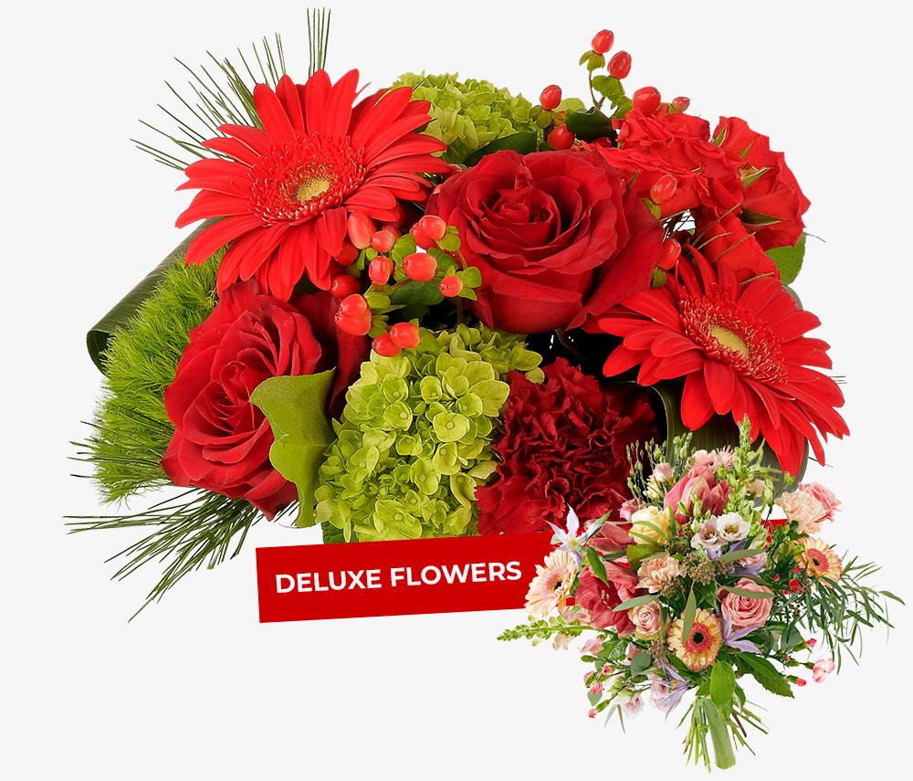 florarii romania